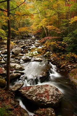 Little River, Great Smoky Mountains