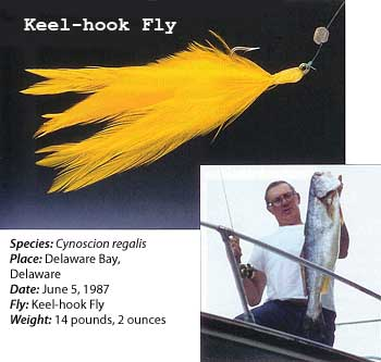 Keel-Hook Fly