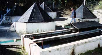 Trout Hatchery