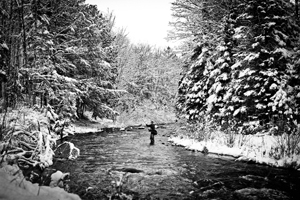 Fly Fishing Winter River