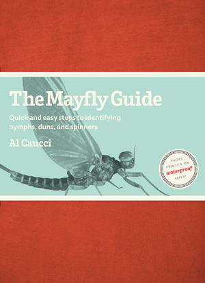 Fly Fishing The Mayfly Guide