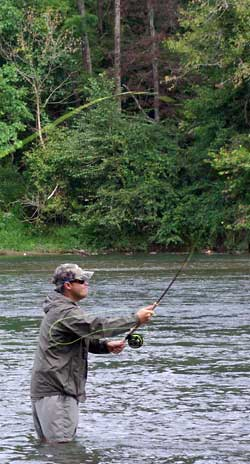 Casting Orvis Switch Rod
