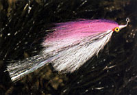 JH Flashtail Clouser by Dan Blanton