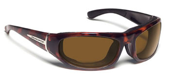 Panoptix Sunglasses