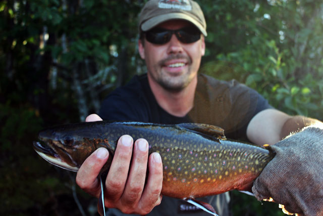 Jason Tucker - Coasters Brook Trout