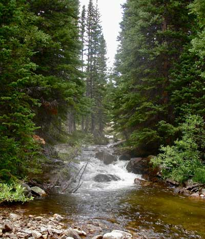 Colorado Small Stream Fishing