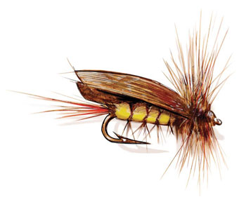 Joe's Hopper Fly Pattern