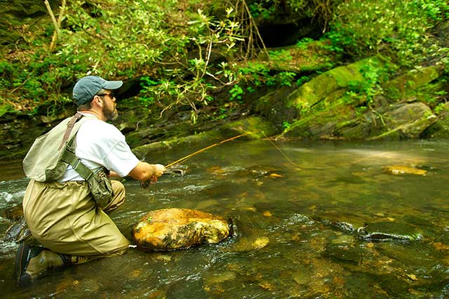 North Carolina Fly Fishing Access Rights