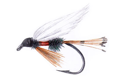 "the history of fly-fishing in fifty flies:"" the royal coachman, Fly Fishing Bait"