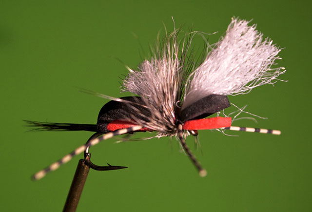 Hippie Stomper Fly Pattern