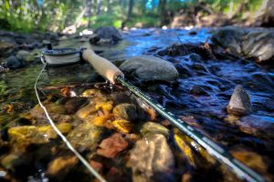 asquith-590-4-fly-rod-lifestyle-photo
